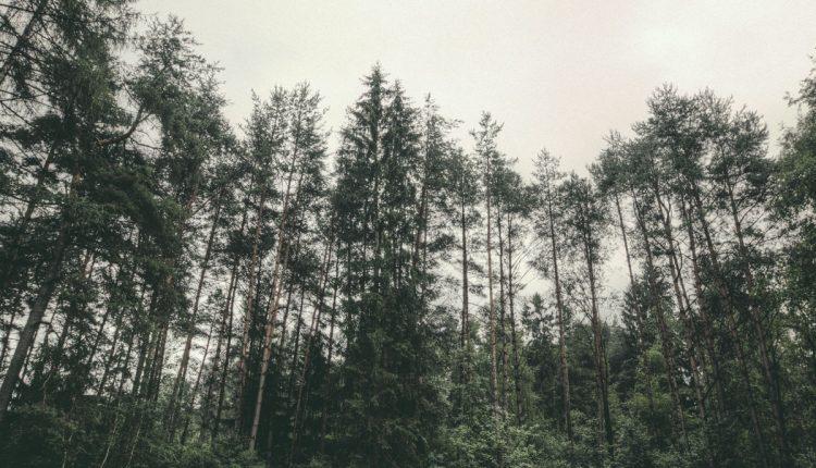 adventure-blog-thumb-6